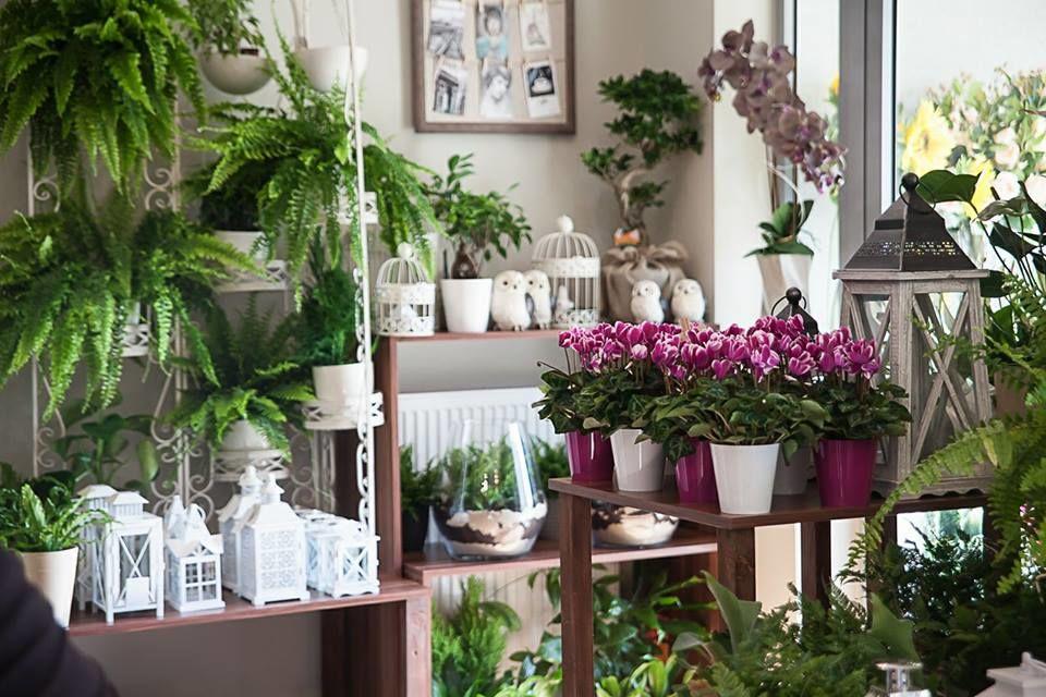 """Kwiaciarnia """"Tropikalny Ogród"""""""