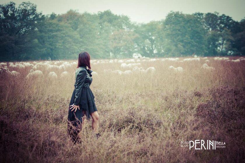 Foto Perini Biella snc