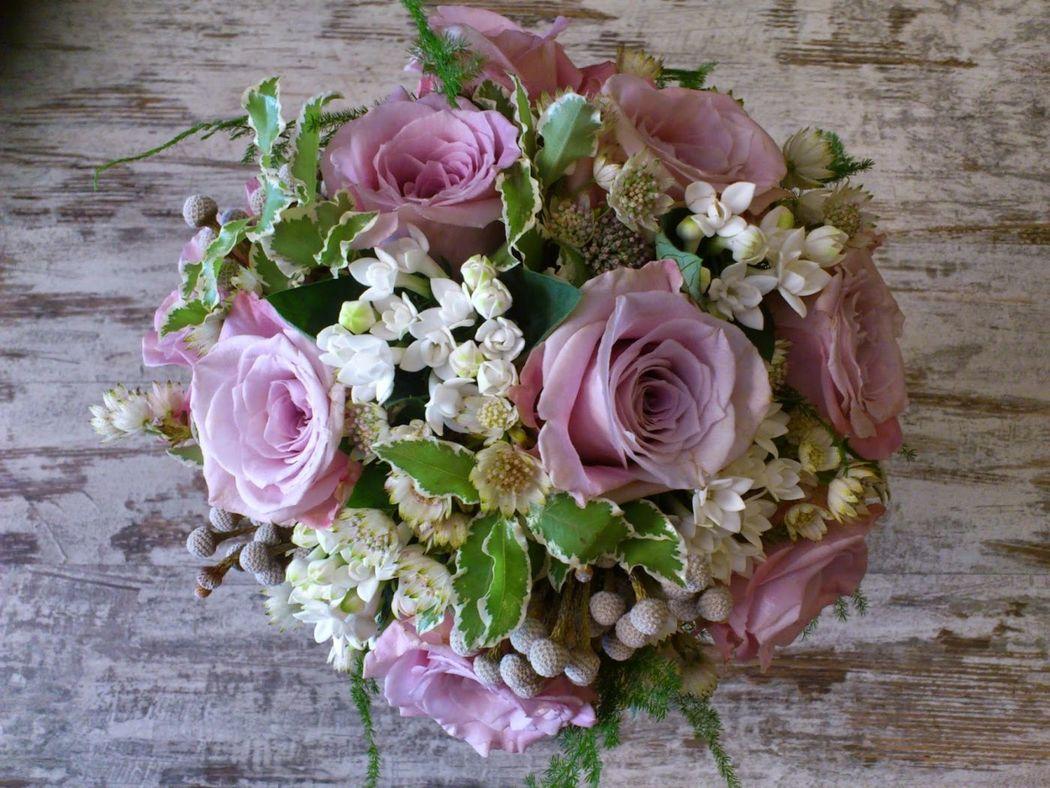 Cártamo Flores.