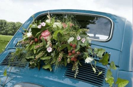 Bloemen en meer