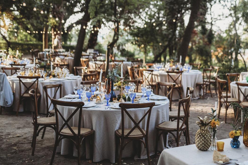 White Dots Wedding Planning