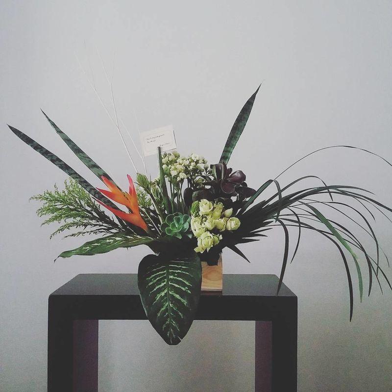 Flores Juan Llano