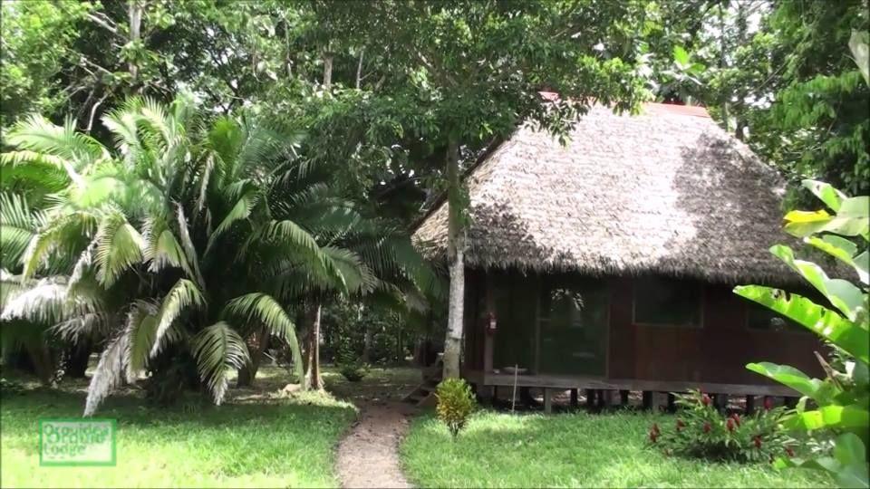 Orquídea Lodge