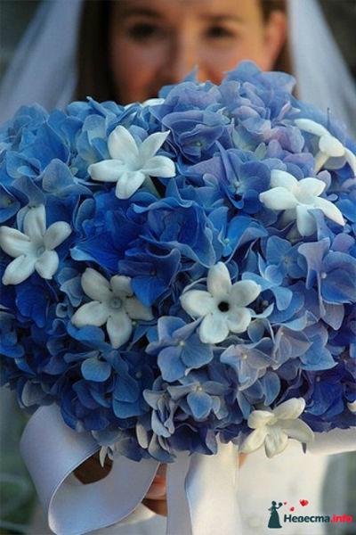 Floral Concept Store Eva Klimek
