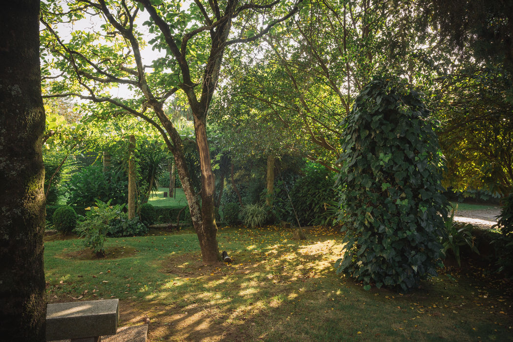 Detalhes do jardim