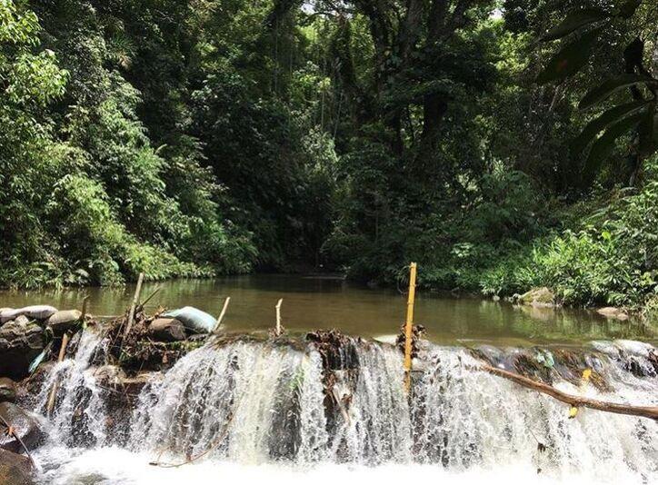 Río Elemento Minca