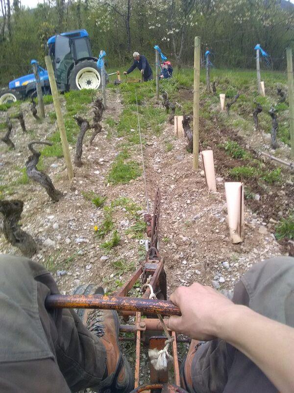 Domaine des Côtes Rousses