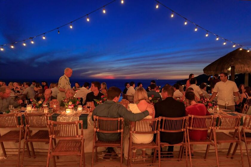 Palms Weddings and Events