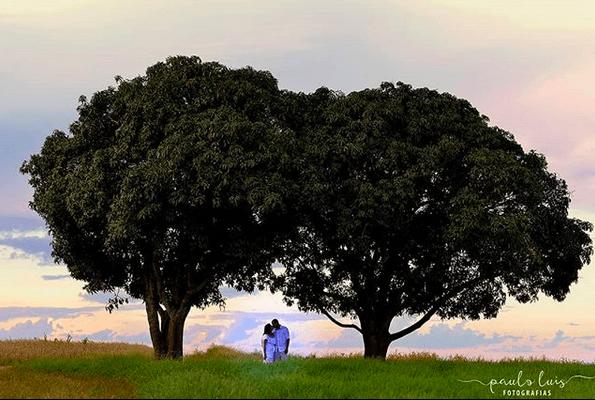 Paulo Luis Fotografias