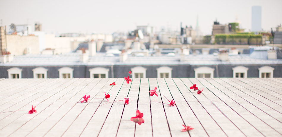 Terrasse Montaigne - Maison Blanche