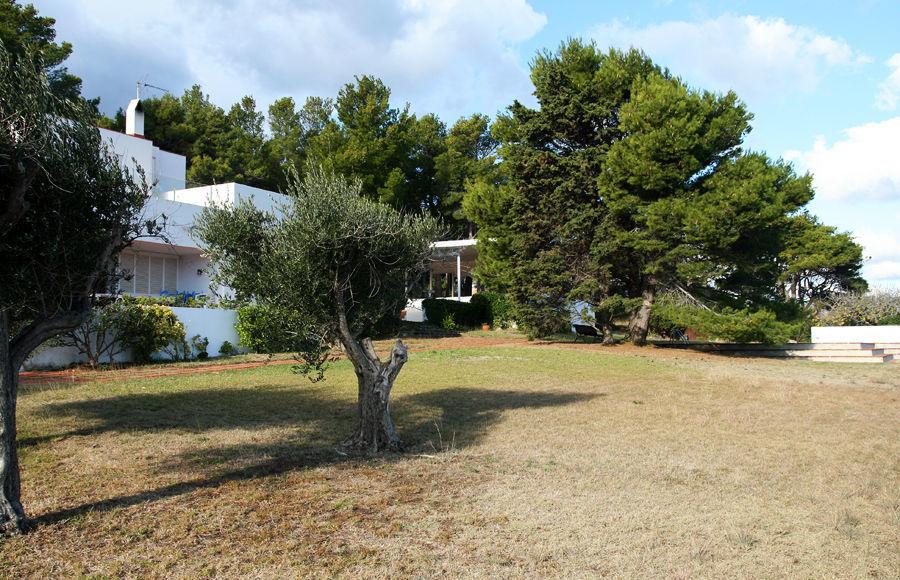 Se sitúa en frente de la casa una gran área de césped, de unos 1000m².