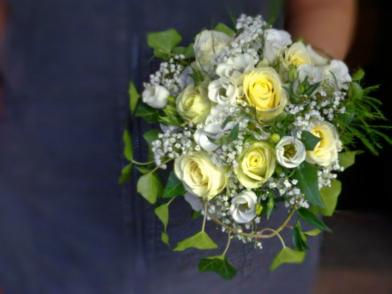 Blumen Biene