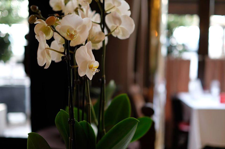 Hôtel Restaurant Le Ruisseau