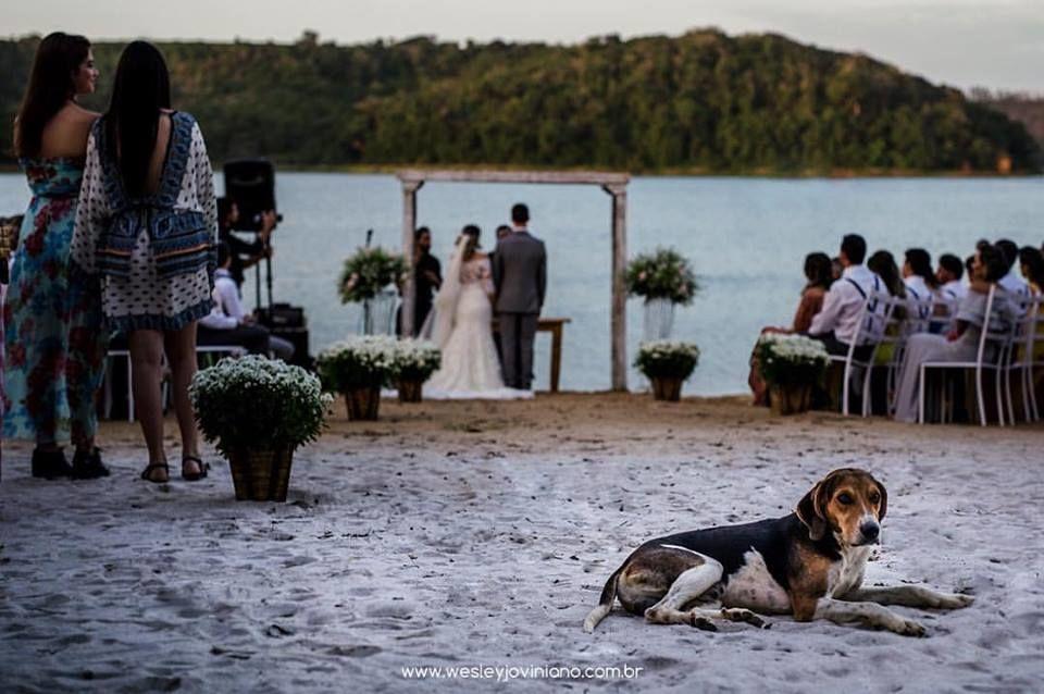 Wesley Joviniano Wedding Photography