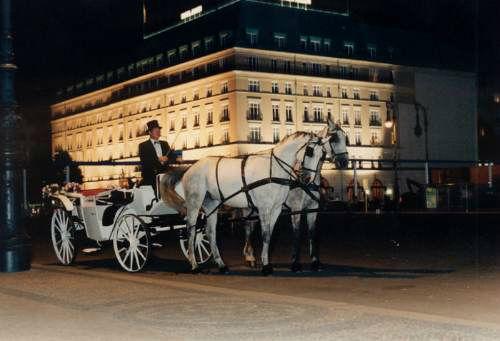 Beispiel: Hochzeitskutsche, Foto: Reitstall Klinke.