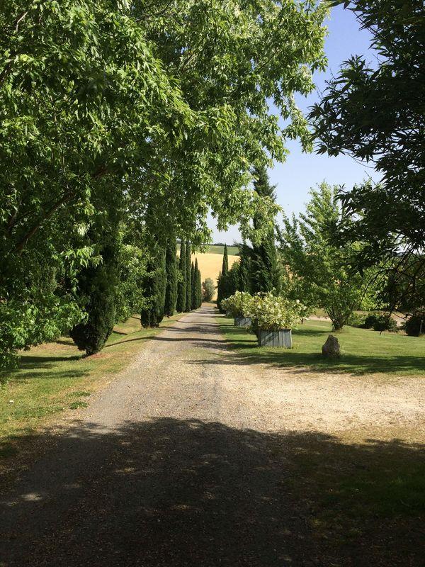 Domaine du Meillon