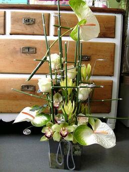 Foto: Clívia - Arte Floral