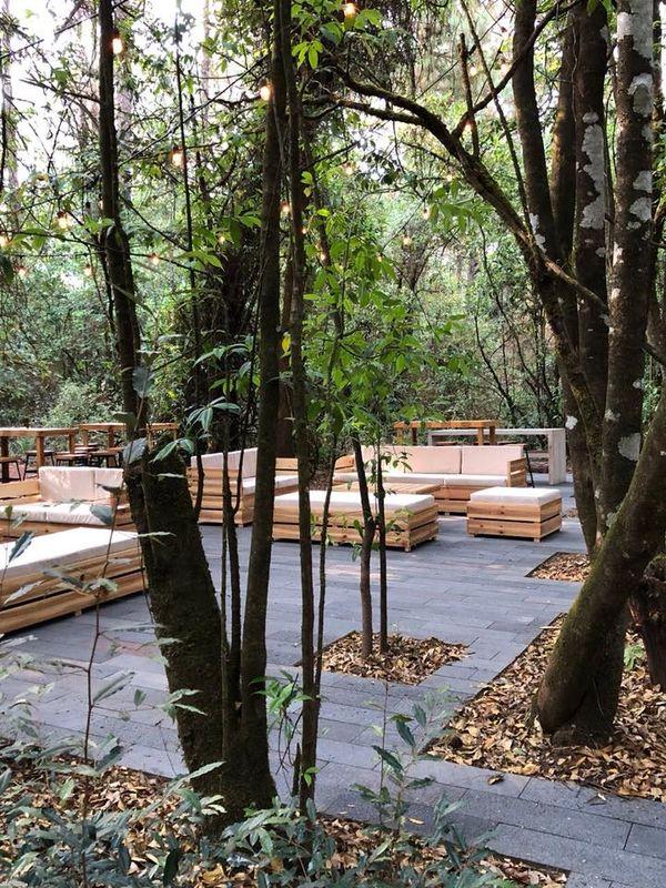 Rosmarino Forest Garden
