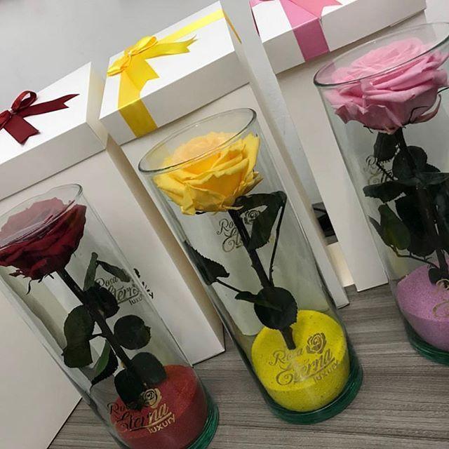 Rosa Eterna Luxury