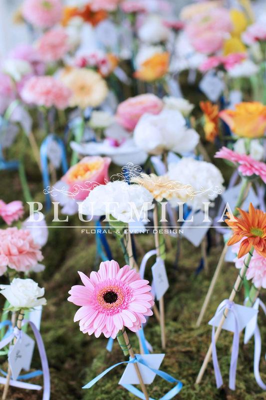 Bluemilia