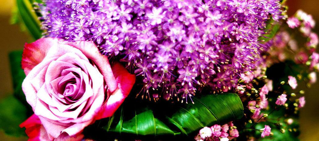 Floreal Blumen