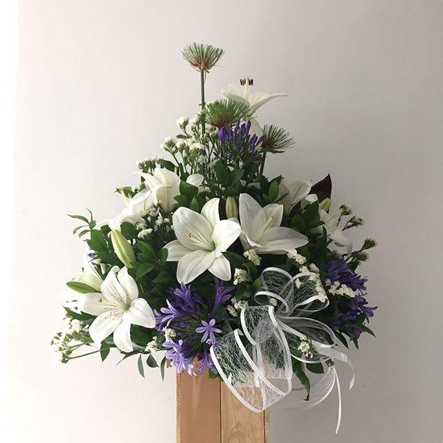 Flores y Canastos