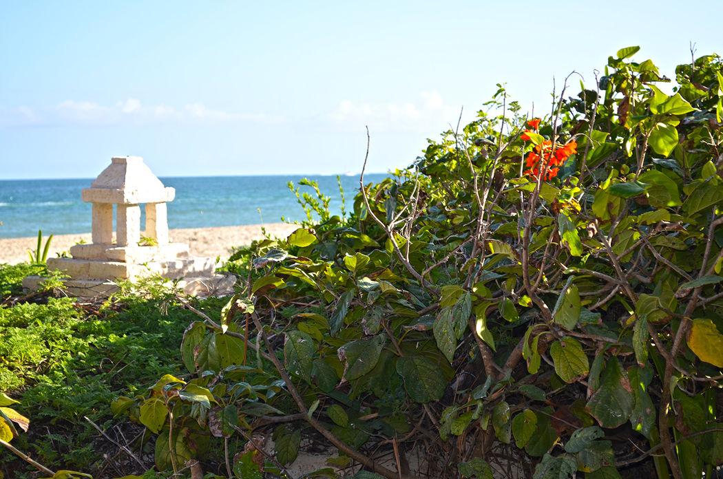 Jardín del Mar