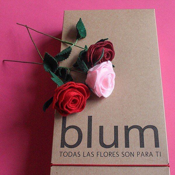 Novias Blum