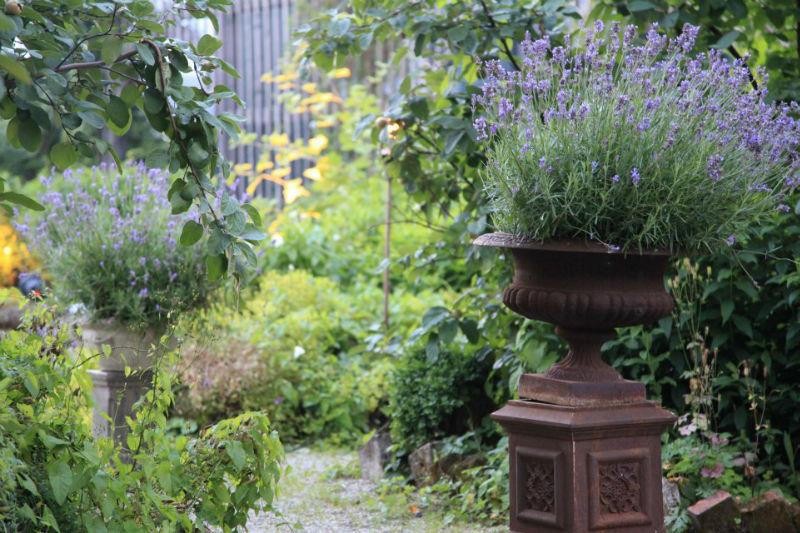 Die Alte Gärtnerei