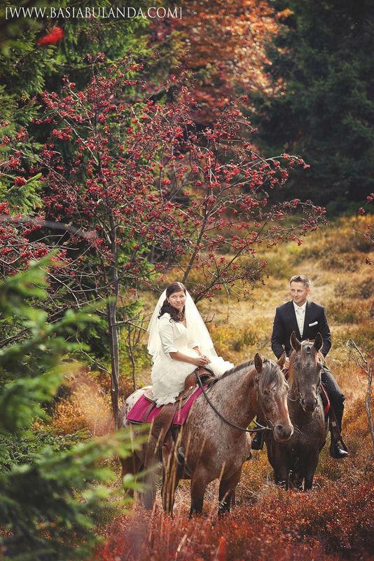 plener ślubny z końmi
