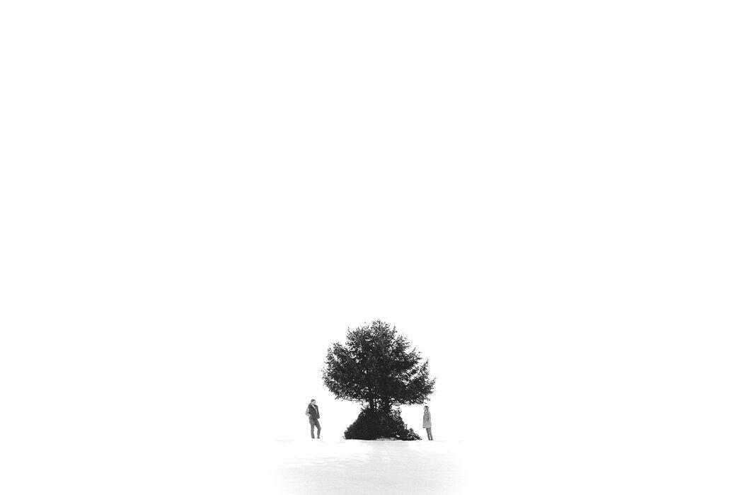 Anne Ucla Photographe