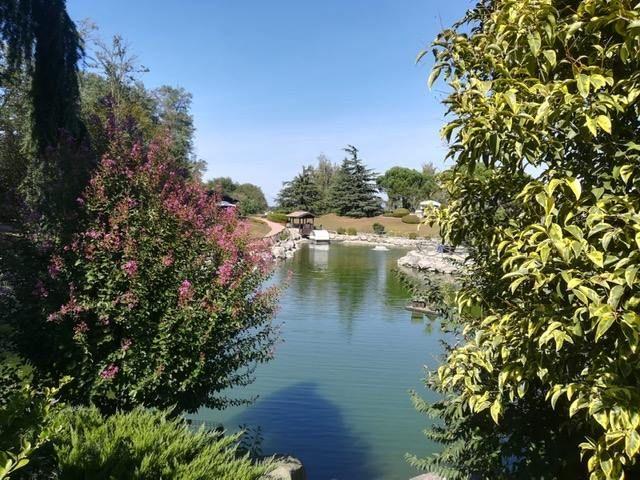 Parco delle Cicogne