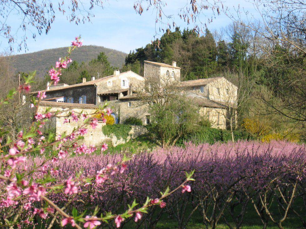 Domaine des Fougères