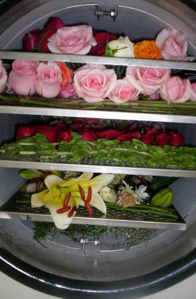 Preservación de ramo de novia, Specialty Cleaners