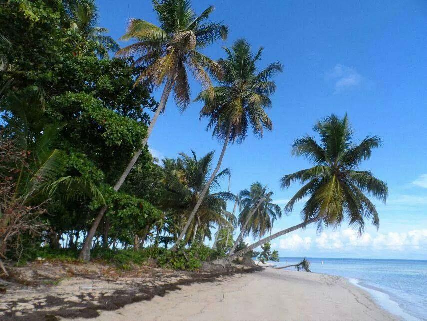 Beispiel: Karibische Strände, Foto: Neckermann.