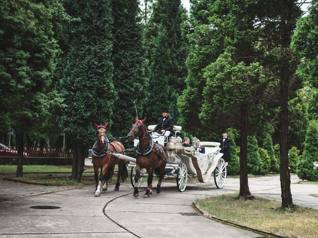 Agencja Ślubna Podwiązki - Wedding Planner