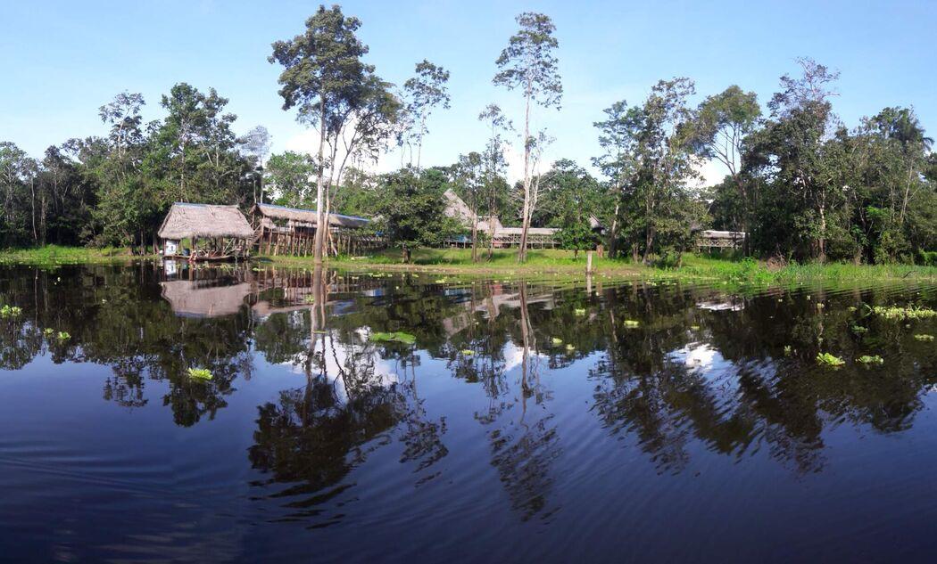 Curassow Amazon Lodge