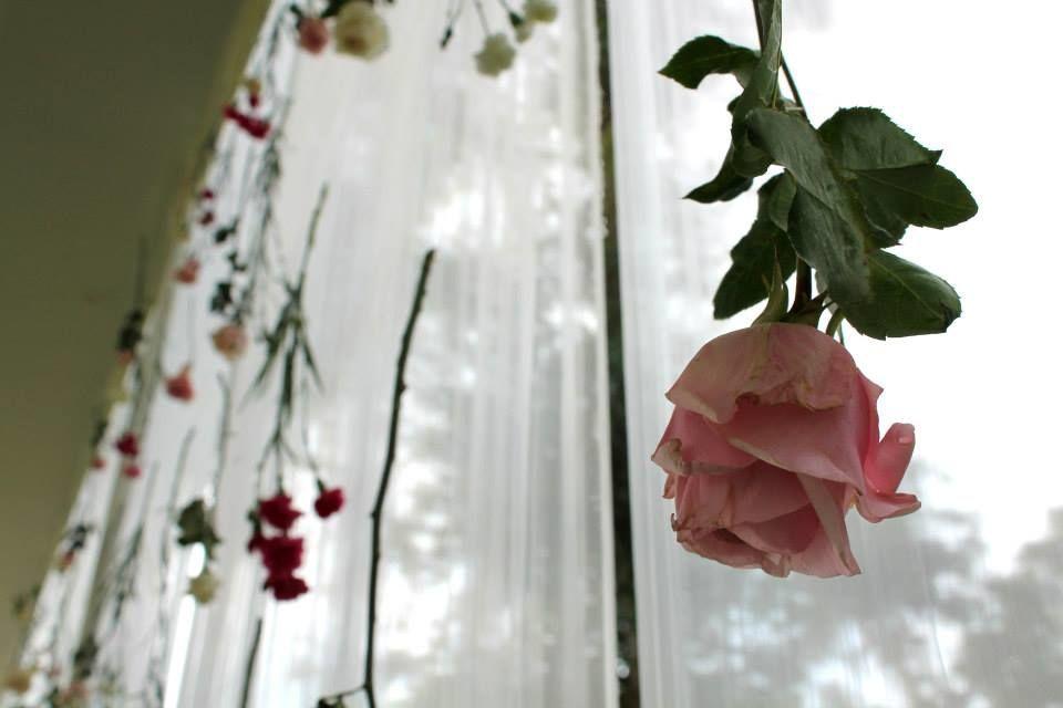 Oh Rose! Studio