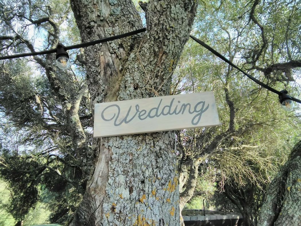 Visos Wedding Planner
