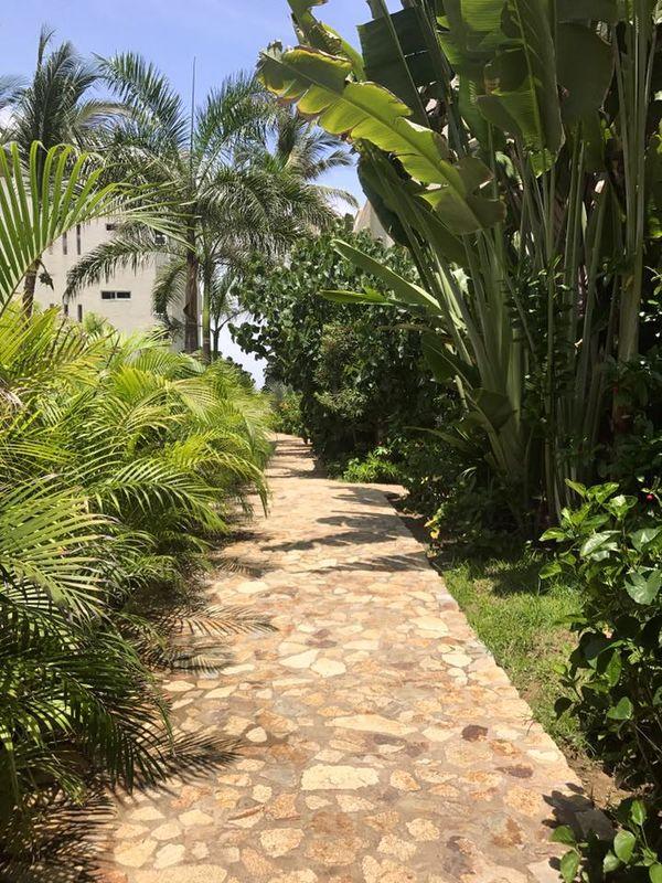 Jardín Levu