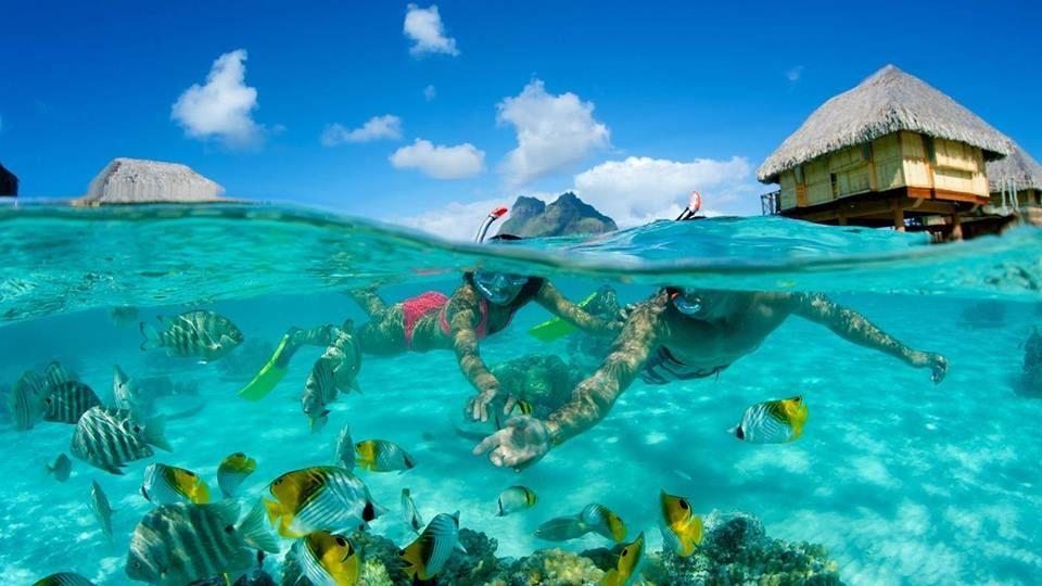 Agencia Turística Buen Viaje Mid