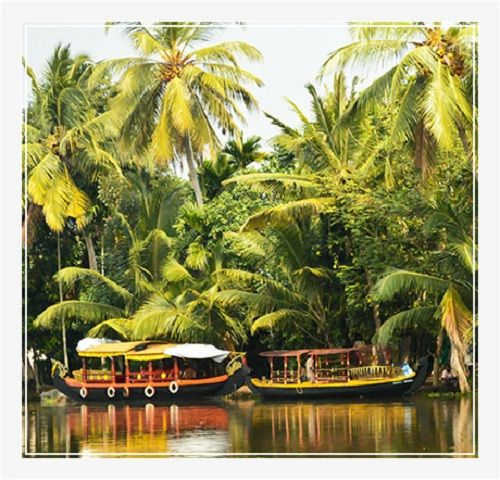 Travel India Global Tours & Travels