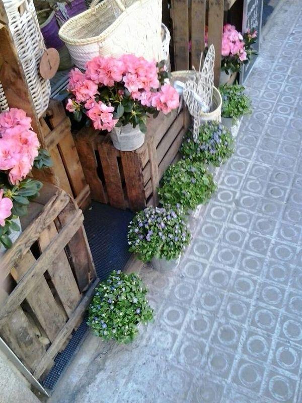 Floristería Harmonia Manresa
