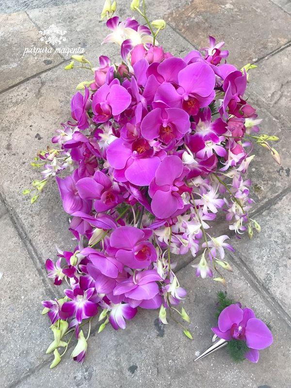 Púrpura Magenta