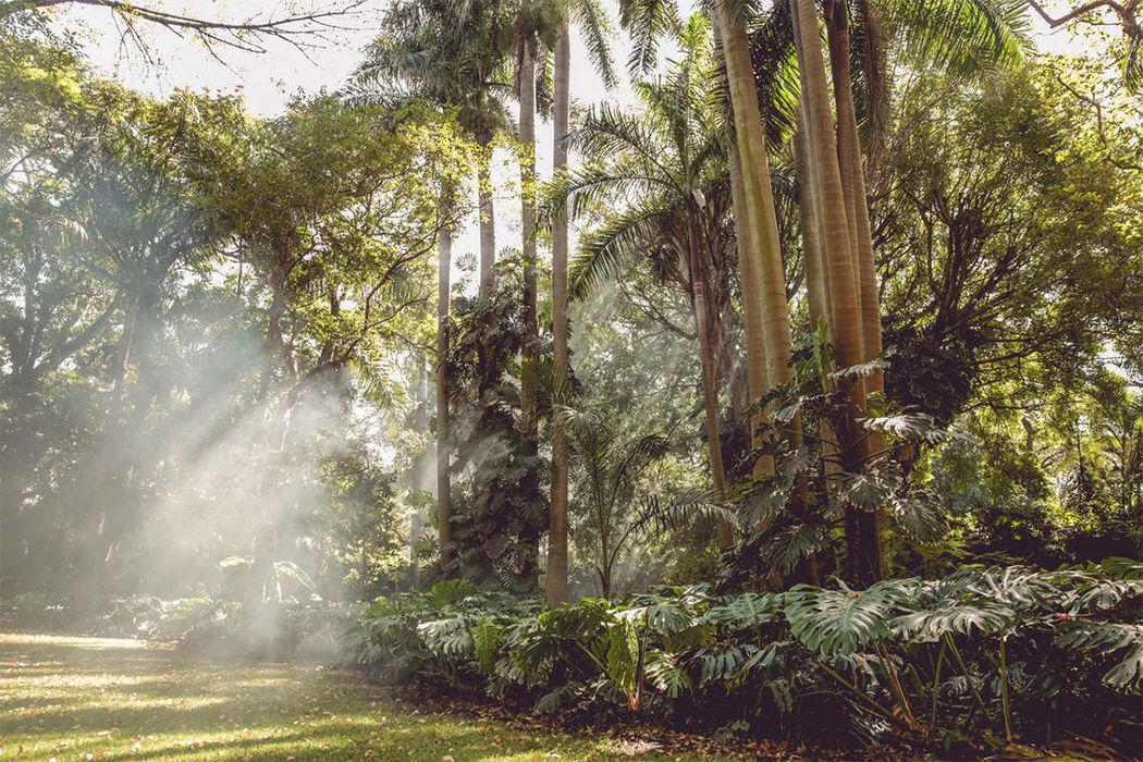 La Antigua Hacienda de San Carlos