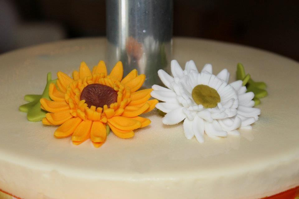 Pasticceria Aroma