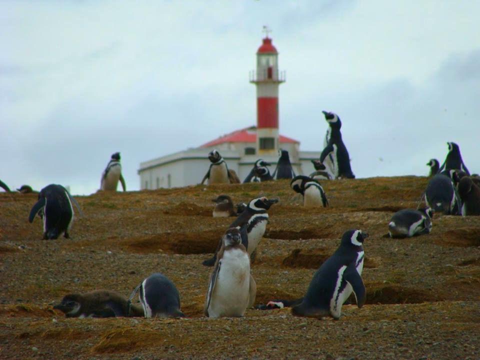 Turismo Comapa: Patagonia