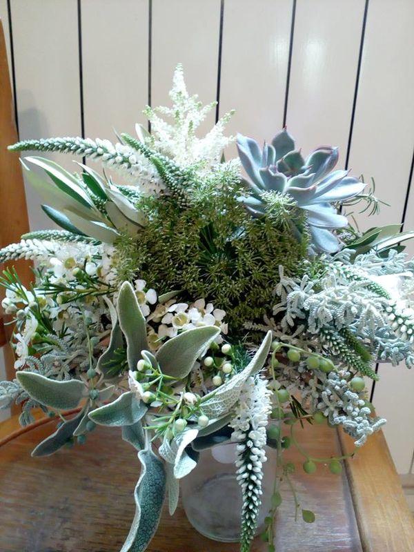 So' Succulentes