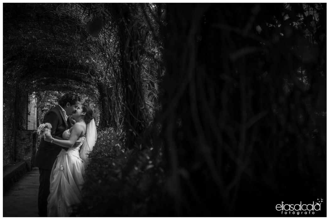 Elías Alcalá Wedding Photographer