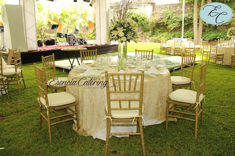 sillas tiffany doradas